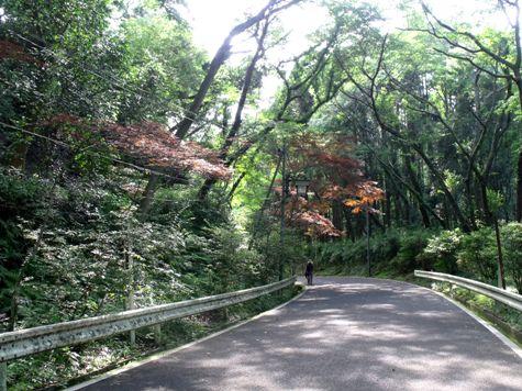 画像ー243大多喜城と薬医門 099-2