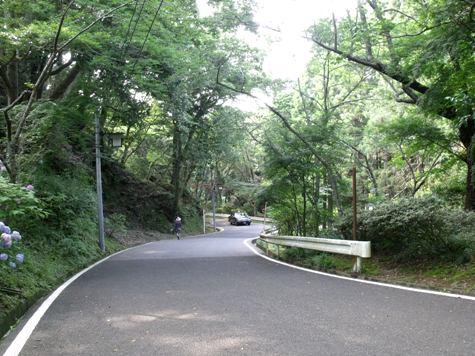 画像ー243大多喜城と薬医門 097-2
