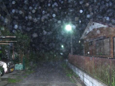 画像ー246 霧のよる 002-2