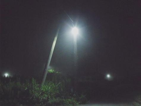 画像ー246 霧のよる 009-2