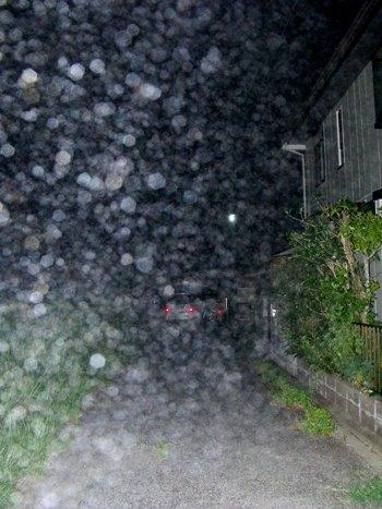 画像ー246 霧のよる 026-2