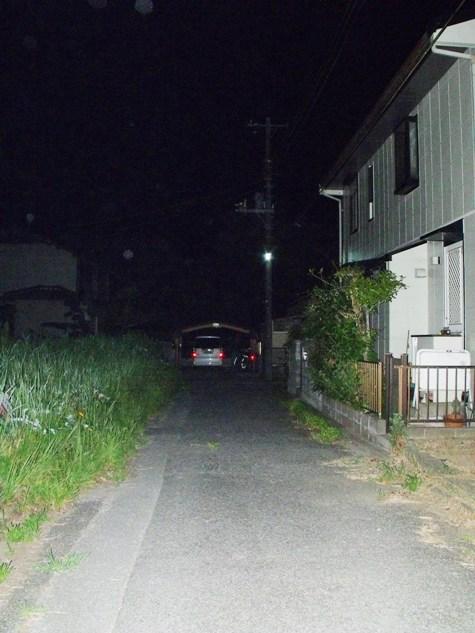 画像ー247 ハエ取り紙と湿度の低い時の夜景 022-2