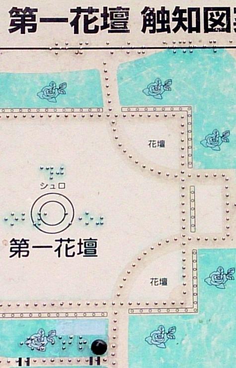 DSC_2408-4.jpg