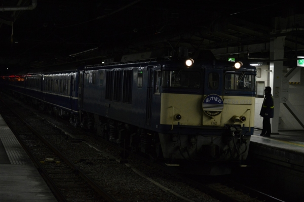 DSC_1382.jpg