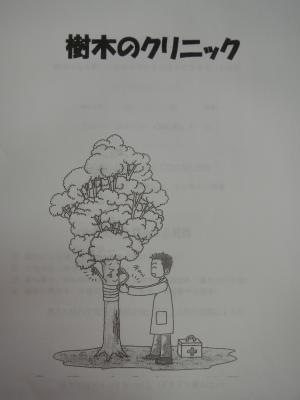 樹木のクリニック2