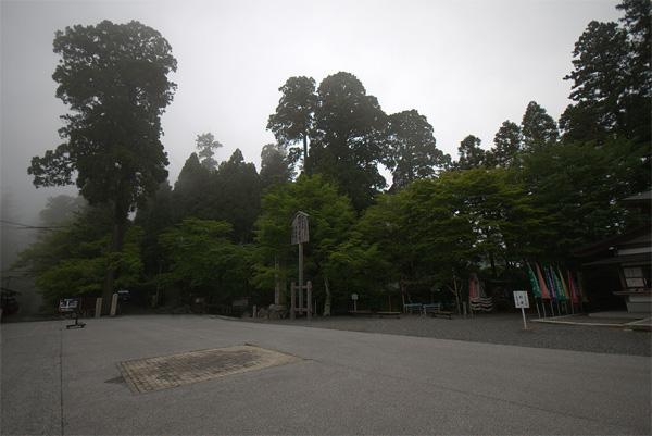 20140607-26.jpg