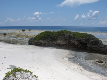 真っ白な浜