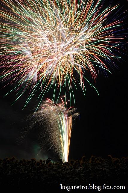 野木の花火