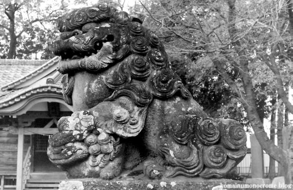 林神社(所沢市林)1