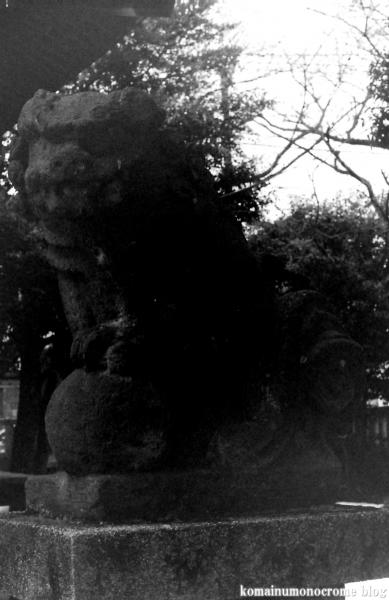 中神熊野神社(昭島市中神町)1