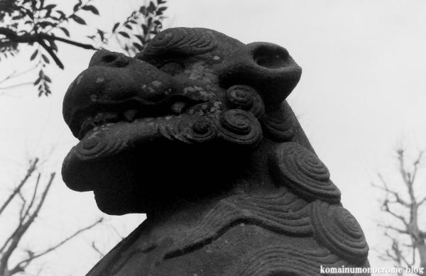 白髭神社(江戸川区小松川)4
