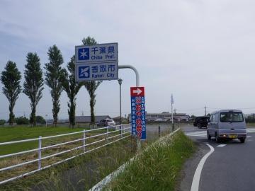 IMGP1147.jpg