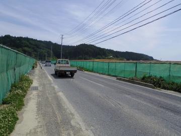 IMGP1381.jpg