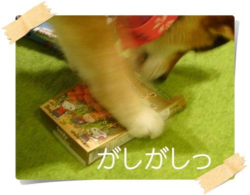 komaro201405026_4.jpg