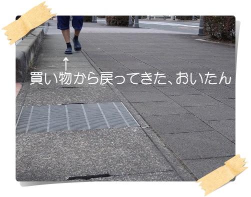 komaro20140622_3.jpg