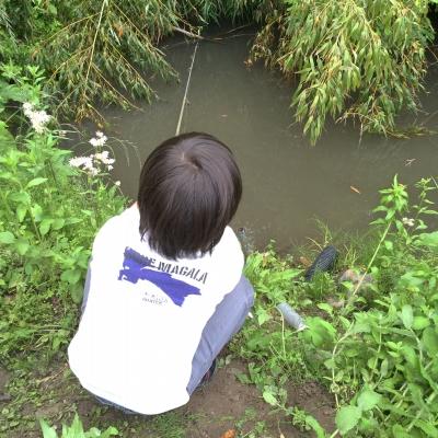 ザリガニ釣り_3