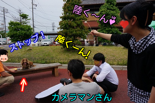 20140525170253aba.png
