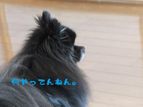 ブログ419-1