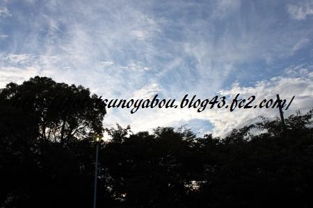 DPP_0402.jpg
