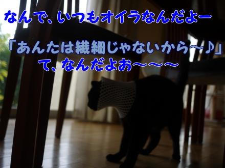 009_convert_20140820231915.jpg