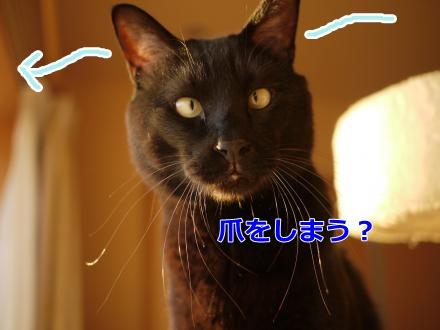 013_convert_20140412161906.jpg