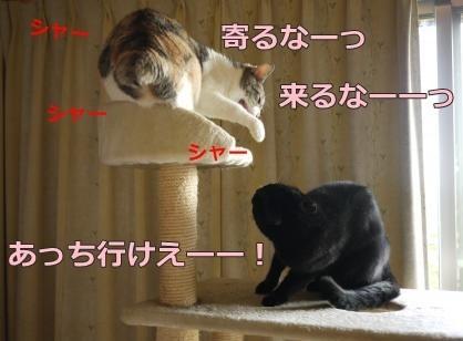 017_convert_20140831174545.jpg