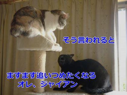 019_convert_20140831174719.jpg