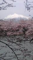 2014弘前さくら岩木山