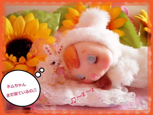 花ブ20140530-2
