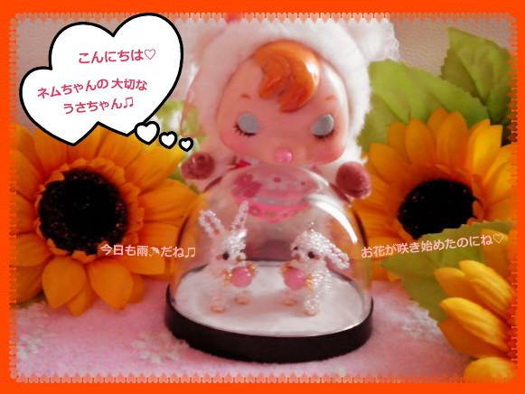 花ブ20140606-1