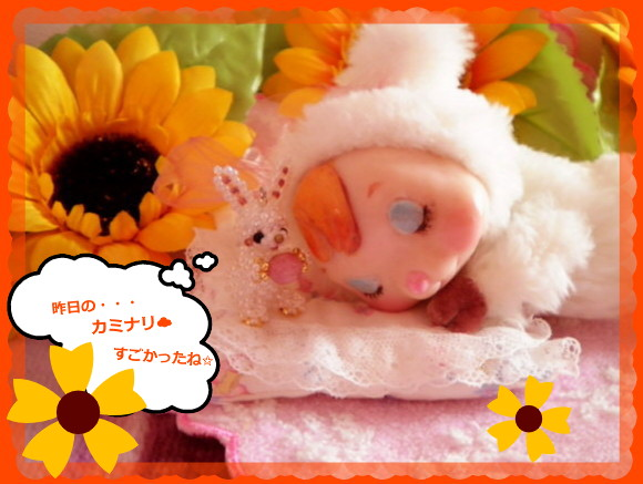 花ブ20140610-1