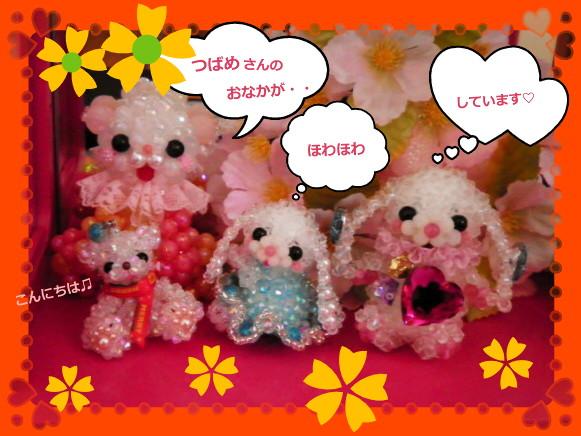 花ブ20140620-1