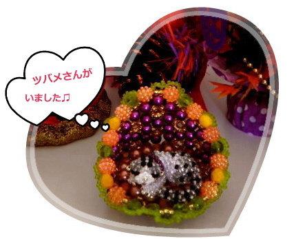 花ブ20140704-1