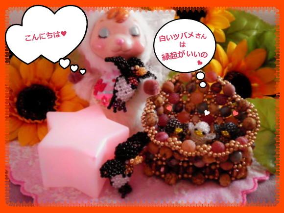 花ブ20140708-1
