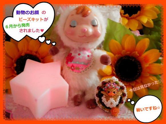 花ブ20140711-1