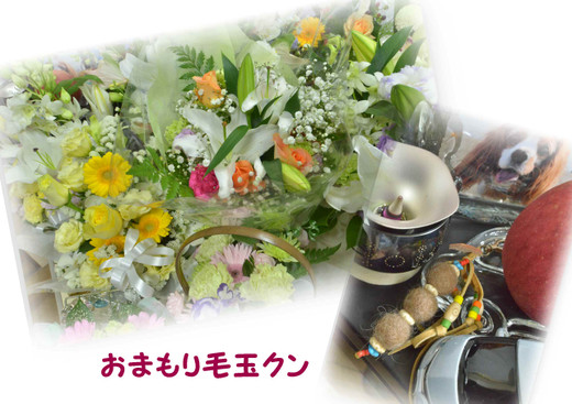 photo[3]