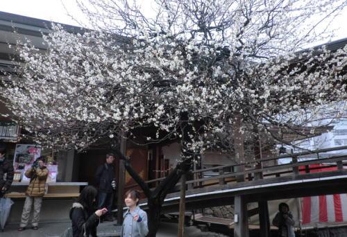 20140302_yushima_6