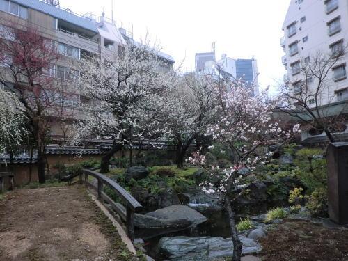 20140302_yushima_7