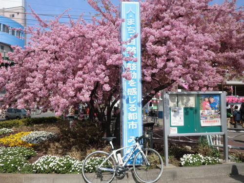 20140309_m_kawadu_1