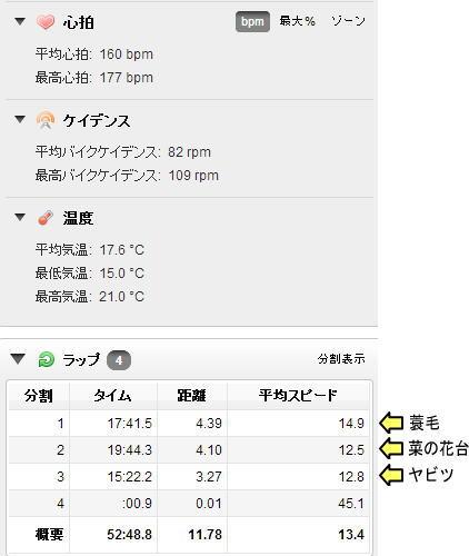 20140427_yabitu_12