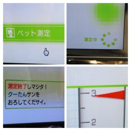 20140324204946d11.jpg