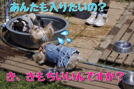 20140601211854761.jpg