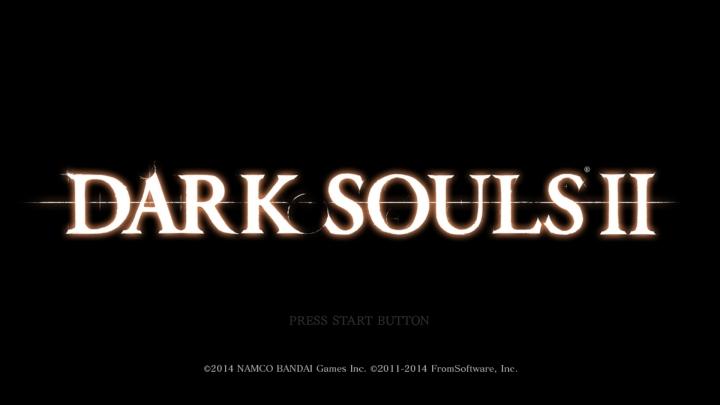 DarkSoulsII 2014-04-25 09-35-24-011