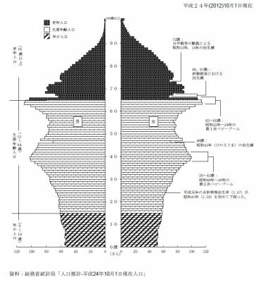 人口ピラミッド2013