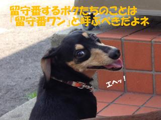 20140720033.jpg