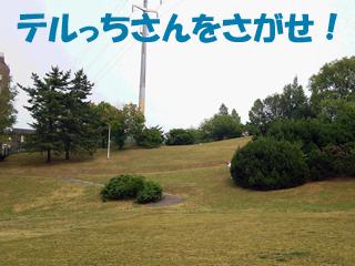 20140725066.jpg