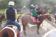 July 28th, 2012 warkworth (4)