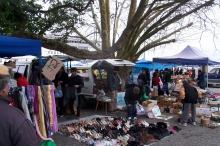 Avondale market (3)
