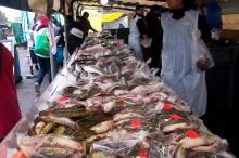 Avondale market (6)
