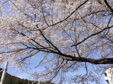 宮ノ平駅前3月31日
